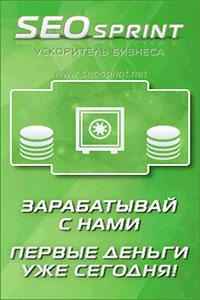 Лучший русский букс Seosprint