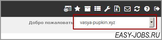 Выбор домена для установки CMS Регру